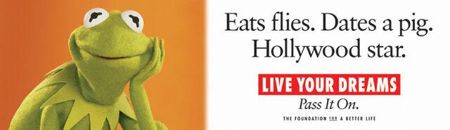 File:Kermit billboard.jpg