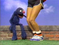 GroverKnees