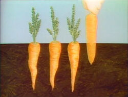 CarrotSubtraction