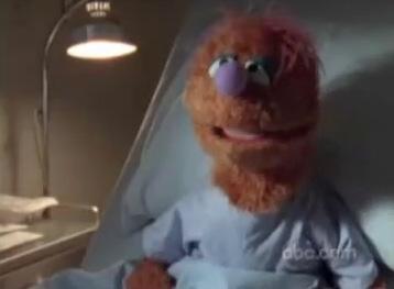File:Scrubs-muppet.jpg