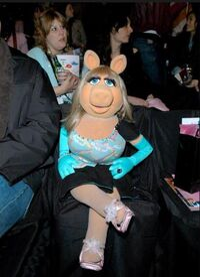 Piggy front row show