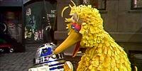 I Say Banana