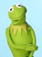 TF1-MuppetsTV-PhotoGallery-15-Kermit