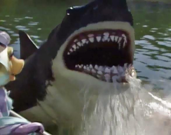 File:Jaws Miss Piggys Hollywood.jpg