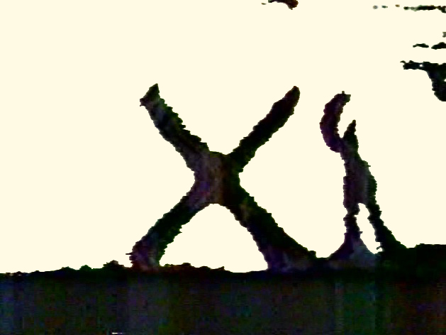 File:SandX.jpg