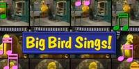 Big Bird Sings! (video)