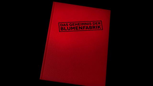 File:EineMöhreFürZwei-Blumenfabrik-Title.png