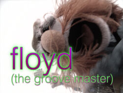Muppetism Floyd groove master