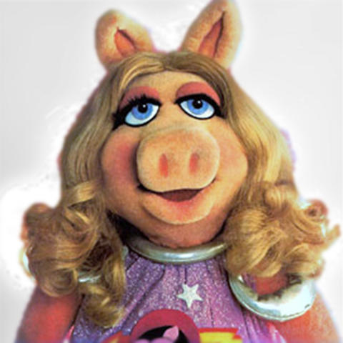 File:FirstMatePiggy-gallery.png