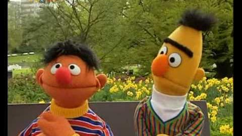 Ernie and Bert Sketches: Sesamstrasse