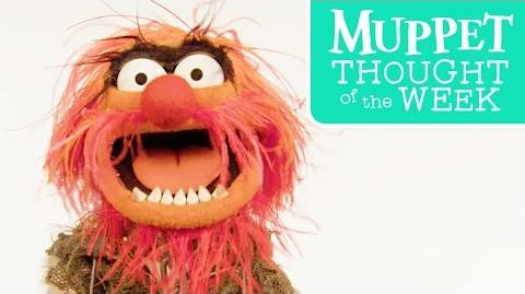 Muppet Thought of the Week feat