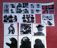 Styleguide-muppets-photos2