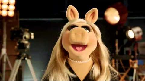 QVC - Special Announcement from Miss Piggy