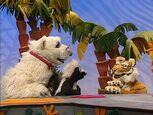 Episode 116: Tiger & Tiger Beetle