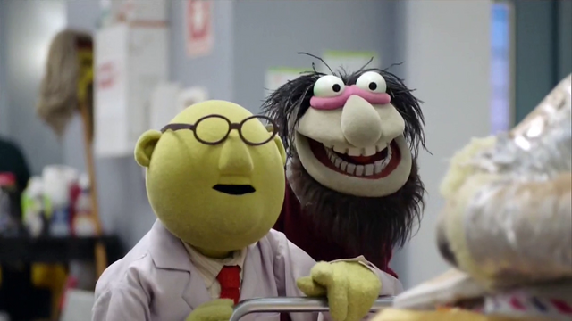 File:TheMuppets-S01E07-Bunsen&CrazyHarry.png