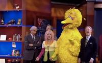 Big-bird-cindy-lauper-colbert