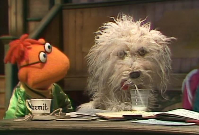 Kermit Shows Rowlf The Dog