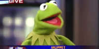 Kermit's political affiliation