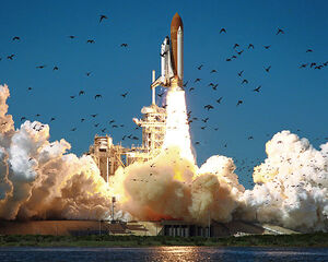 Space Shuttle Challenger STS-51-L