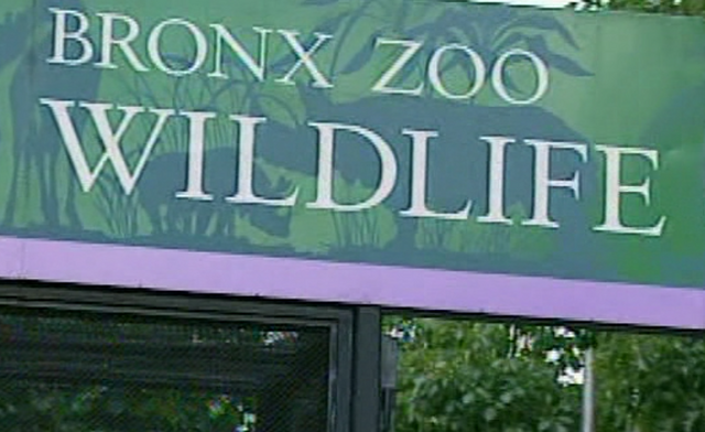 File:ZZoo.png