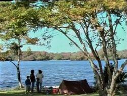 Film.Lake