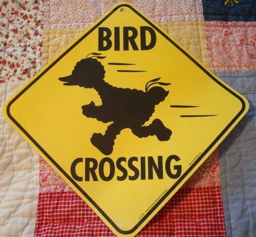 File:Bird crossing.jpg