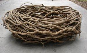 File:Big Birds nest from Elmo in Grouchland.jpg