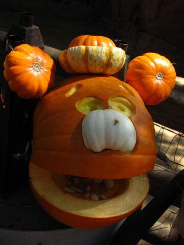 File:Big thunder pumpkin fozzie.jpg