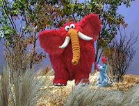 Ewteeth-elephant