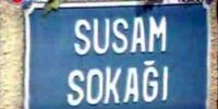 Susam Sokağı