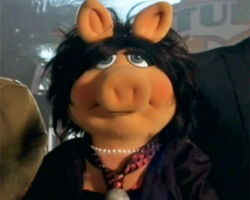 Piggy-JoanJonas