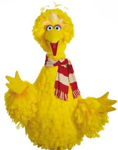 File:Big Bird scarf.jpg