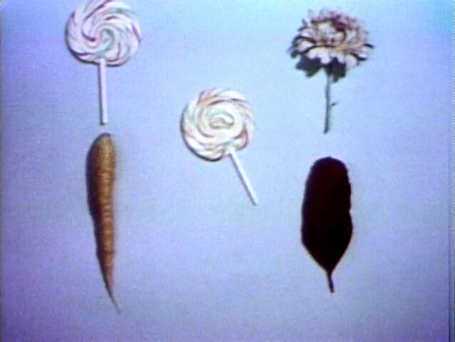 File:Lollipop.feathers.jpg
