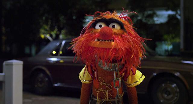 File:Muppets2011Trailer01-1920 19.jpg