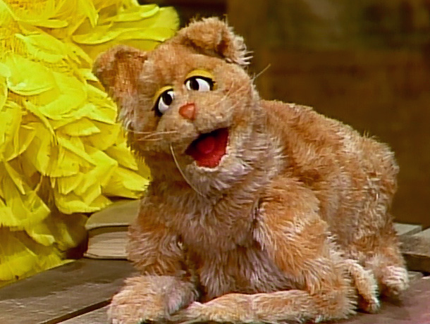 File:Simba the kitty-cat.jpg