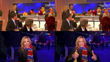 DasHerbstfestDerTräume-HeleneFischer-Scarf-(2013-10-12)