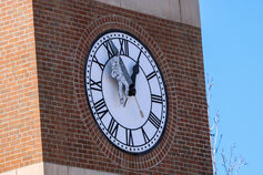 MV3D gonzo clock