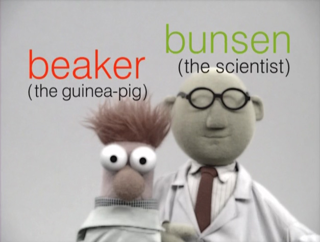 File:Muppetism Beaker guinea-pig Bunsen scientist.jpg