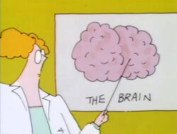 NancyEinstein.Brain