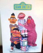 Sesame street live big bird and the abc's program 2