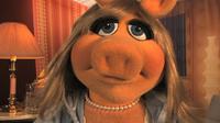 Muppets-com20