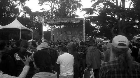 Elvis Costello - Red Shoes - Hardly Strictly Bluegrass 2012