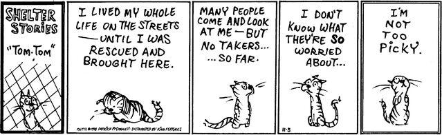 File:Tom tom comic.jpg