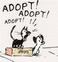 File:Adopt.jpg