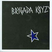 Brygada Kryzys album.jpg