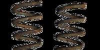 Long coil spring