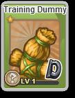 Training Dummy Adv