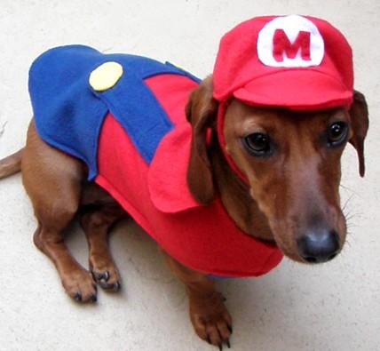 File:Mario-puppy-costume.jpg