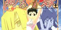 Seto no Hanayome Manga Volume 11