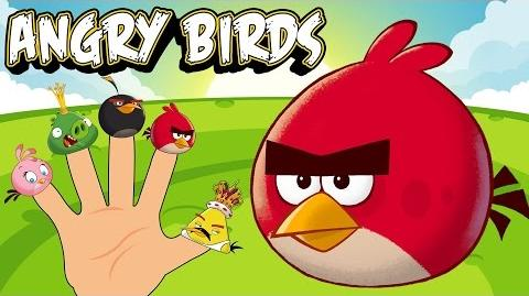 Finger Family Angry Birds - Nursery Rhymes Kids Songs and Baby Songs